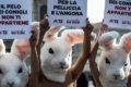 Milano Moda Haftasında Protesto