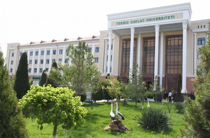 Özbekistan – Türkiye iş birliğinde yeni adımlar